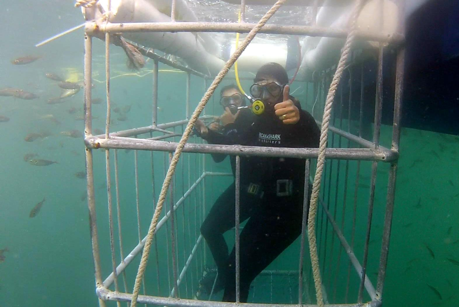 Shark Cage Diving. African Shark Eco-Charters
