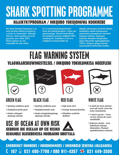 Shark Spotter's Flag Warning System used to raise public shark awareness