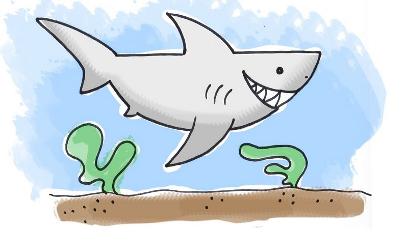 fun shark drawing
