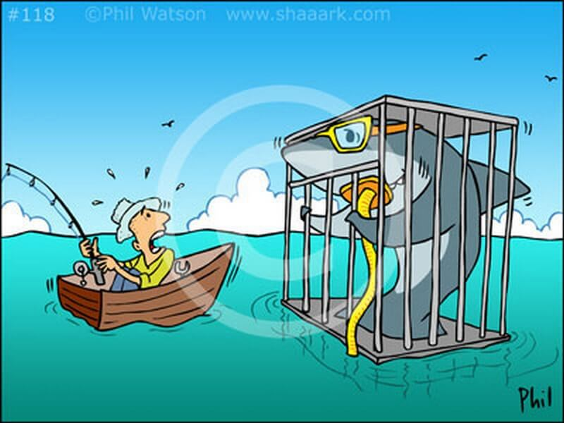 Shark cartoon of shark in cage outside water